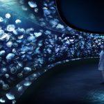 """サンシャイン水族館 新クラゲエリア """"海月空感(くらげくうかん)"""" 2020年4月に誕生!!"""
